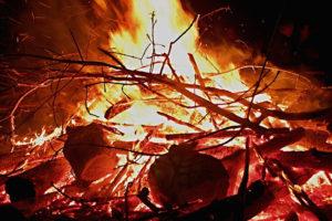 feu, interdiction de brûler les déchets verts